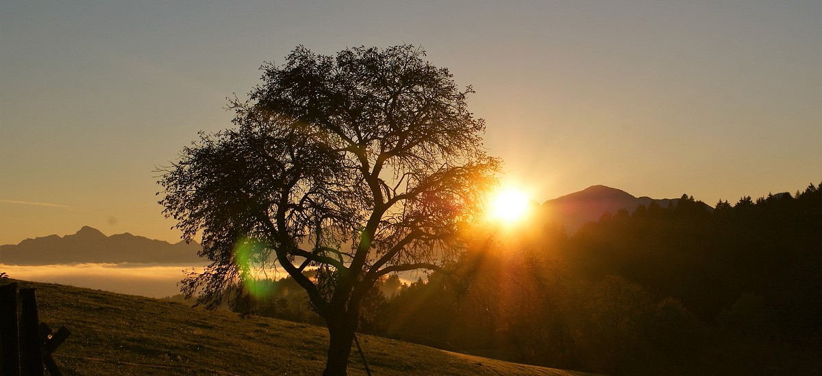 Traumhafte Sonnenauf- und untergänge erleben