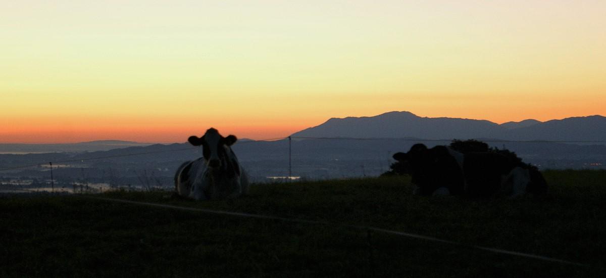 Traumhafte Sonnenauf- und untergänge erleben!